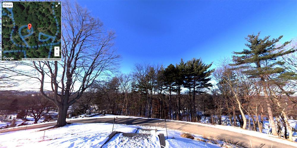 Cemetery 360 Mt. Auburn